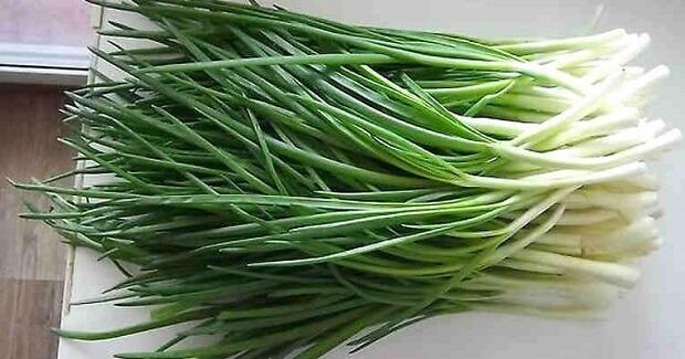 Гениальный способ выращивания зелёного лука дома