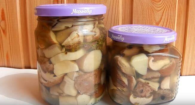 Готовим заготовки на зиму: маринад для любых грибов