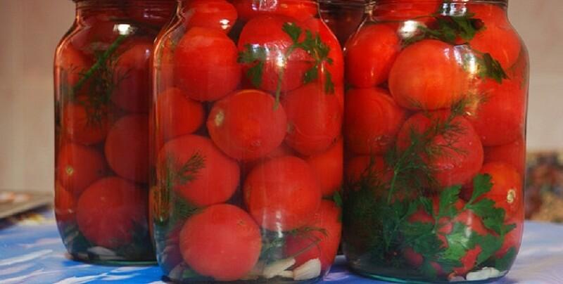 Самый простой рецепт засолки помидоров холодным способом