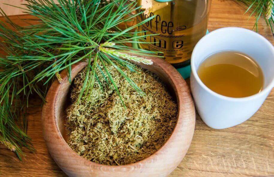 Ферментированный чай из сосновой хвои