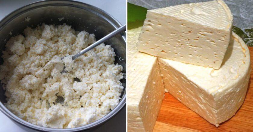 Французский сыр в домашних условиях