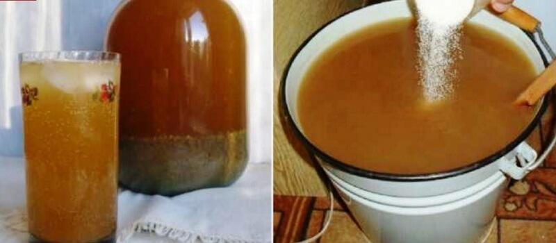 Лёгкий рецепт вкусного домашнего кваса на цикории