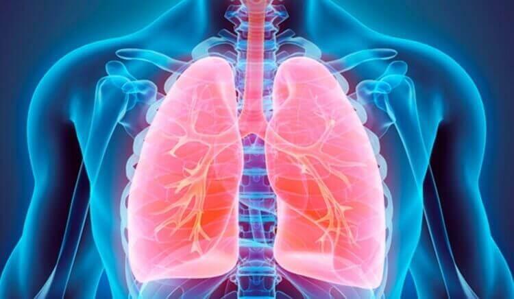 Восстановление организма после вирусных заболеваний и пневмонии