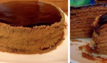 Как приготовить шоколадный медовик «Дамский каприз»