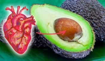 Как вырастить авокадо в домашних условиях