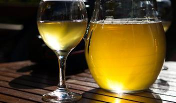 Настоящее вино из яблок в домашних условиях