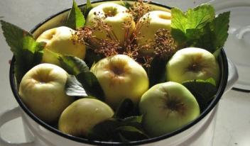 Самые вкусные рецепты моченых яблок в домашних условиях