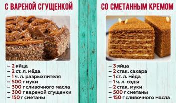 5 разнообразных рецептов вкусных тортов «Медовик»